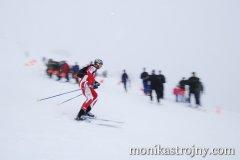 alpin-sport-mmale-strojny-136_resize.jpg